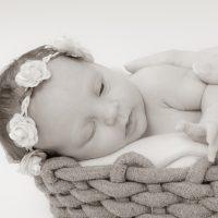 Die ersten Neugeborenenfotos in diesem Jahr