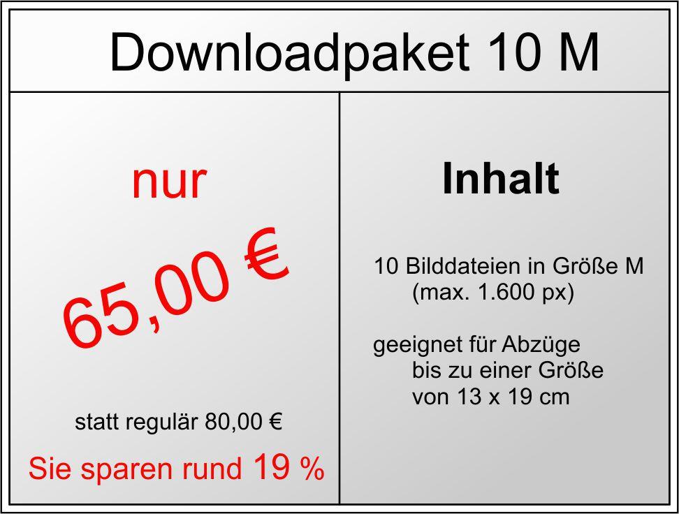 Dateidownload
